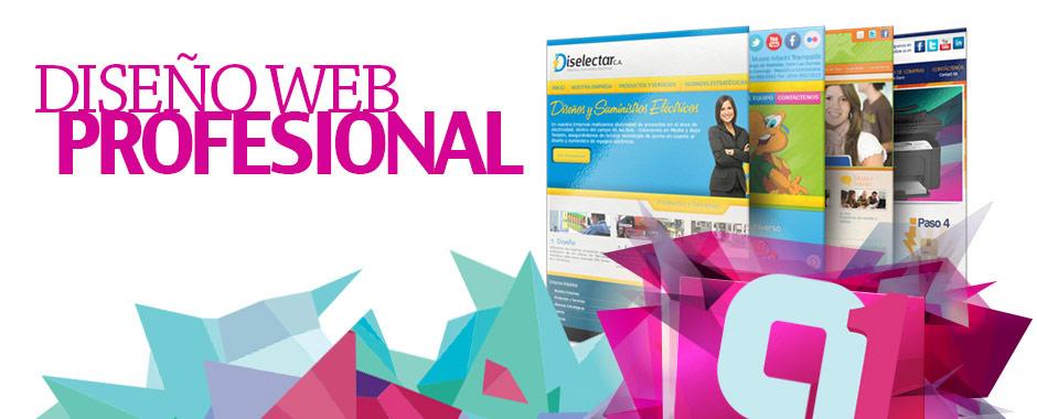 Diseño Web Profesional Venezuela