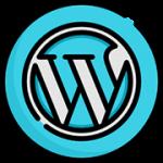 diseno-web-wordpress-venezuela